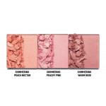 KKW Blush Pallete: Classic Shimmers