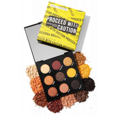 Colourpop x Shayla Eyeshadow Pallete - Proceed with Caution